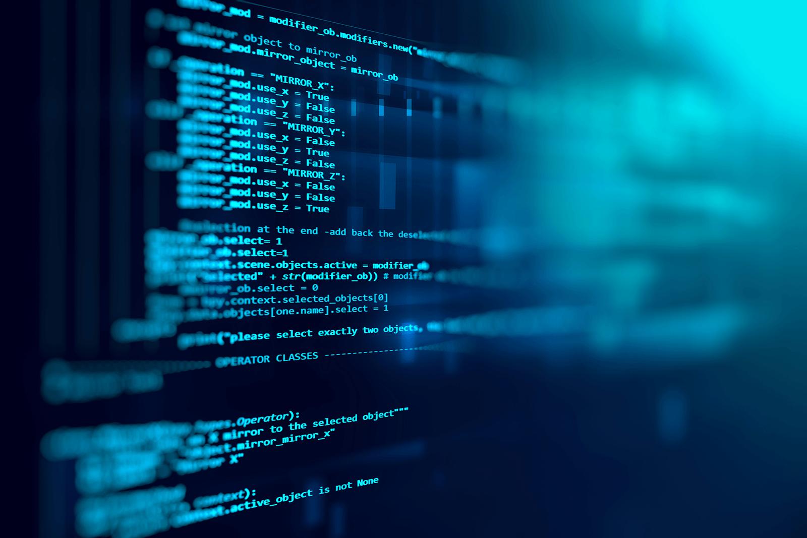 sviluppo-software-branch